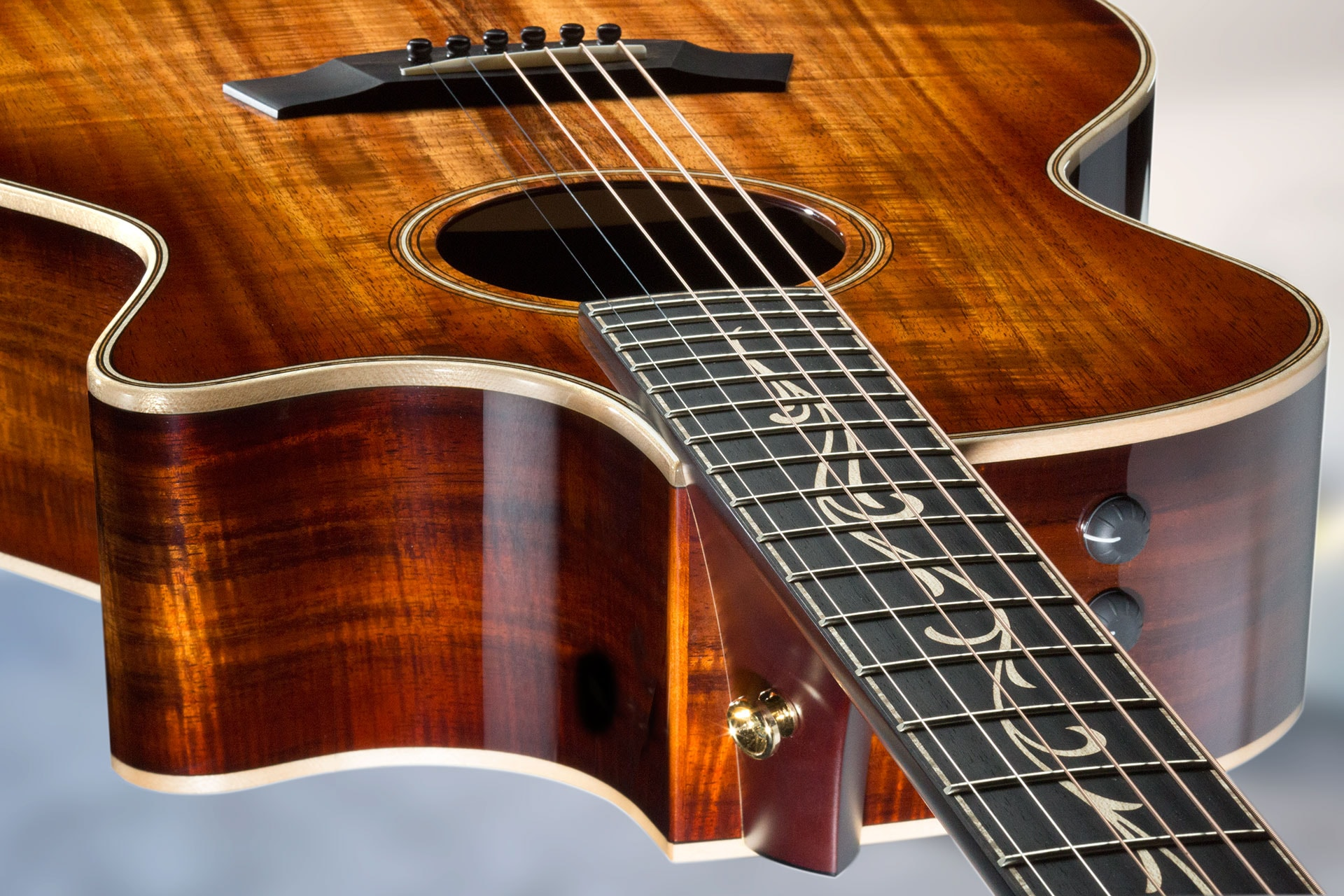 Announcing V-Class Bracing From Taylor Guitars   GC Riffs