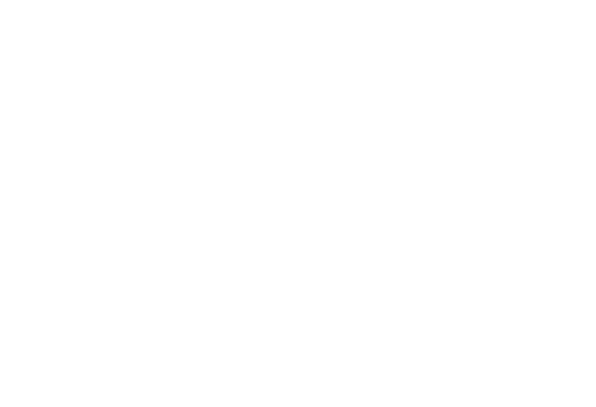 Johnson City Grand Opening.