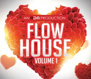8 D M Flow House Software Volume 1