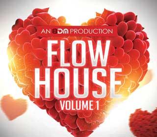 8 D M Flow House Software Volume 1