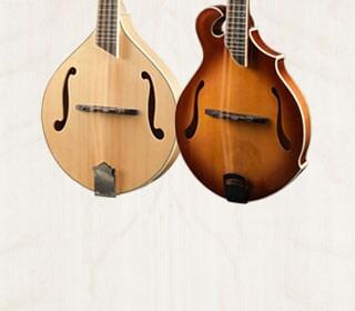 Breedlove Mandolins