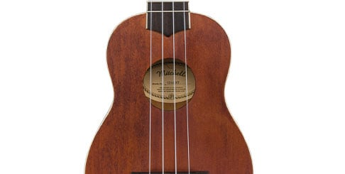 Best-Seller for Beginners Ukuleles