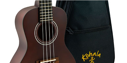 Ukulele and Packs Under $100