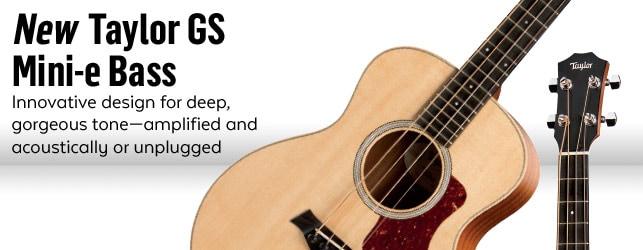 GS Mini-e Acoustic Electric Bass Regular